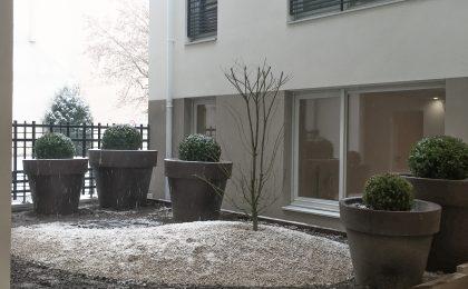 Jardin intérieur logement neuf